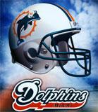 Los Dolphins intentarán regresar a los play offs